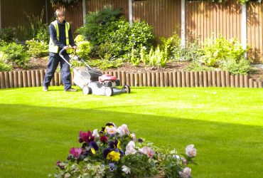 Lawn Clean Up Service Traverse City