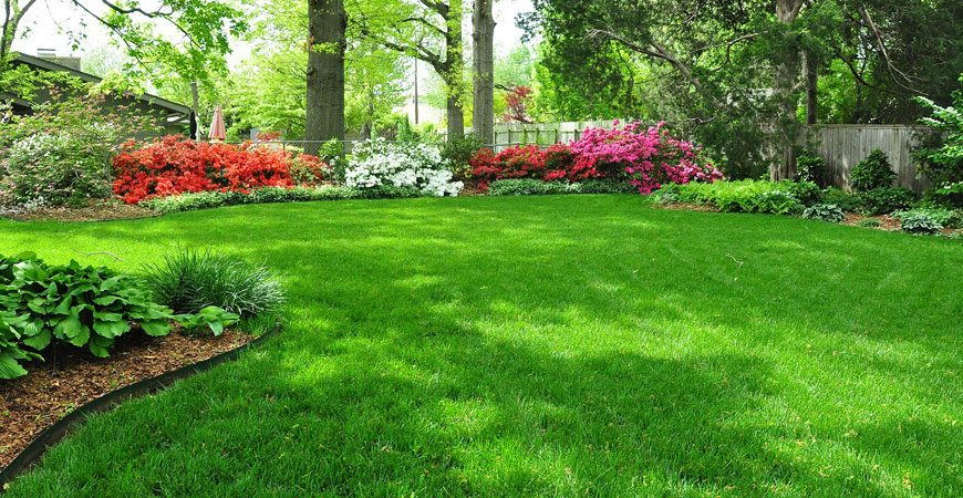 Landscaping Service Traverse City + Pruning